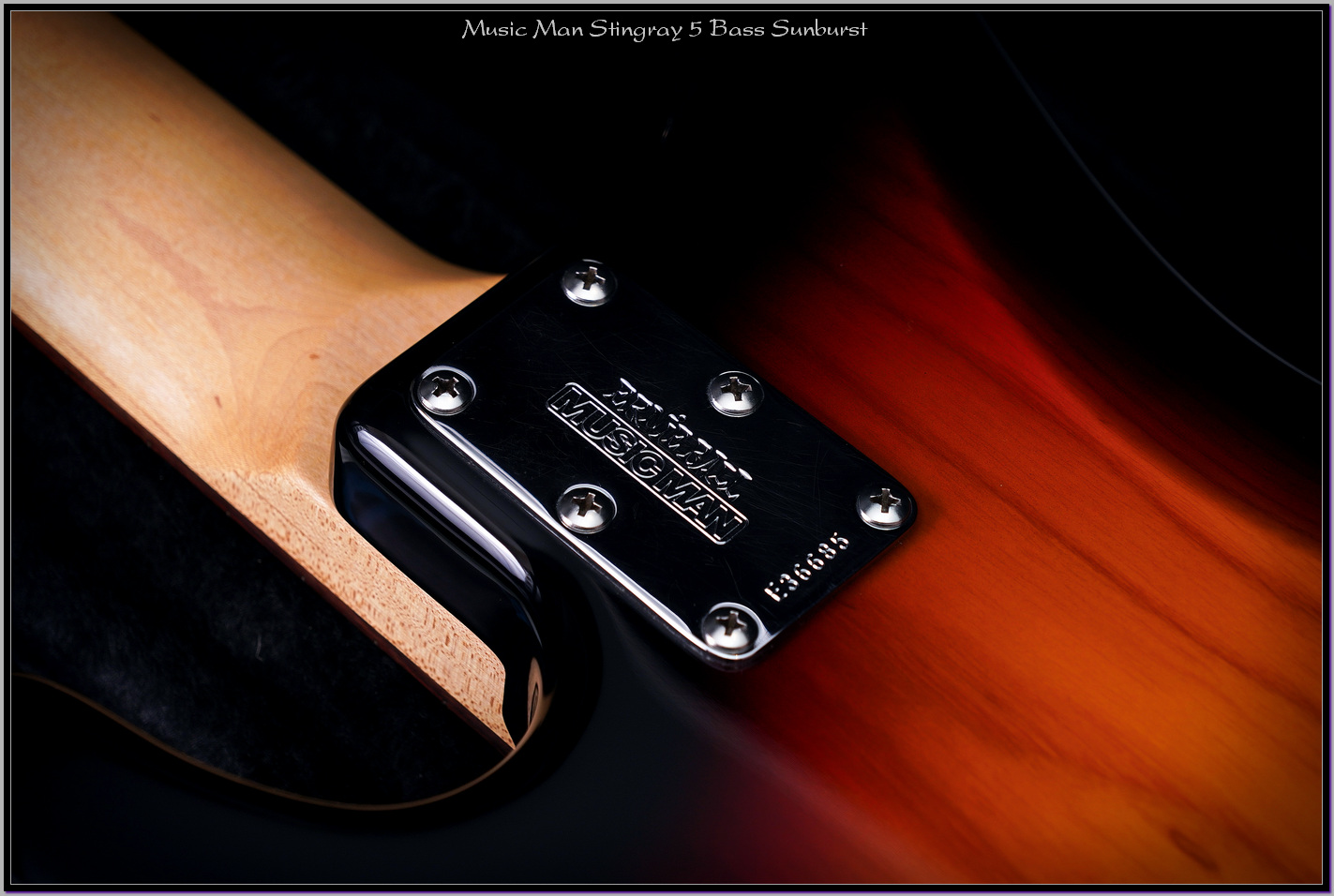 Music Man Stingray 5 Bass Sunburst 08_xupd.jpg
